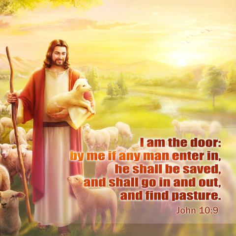 Bible Study—John 10:9