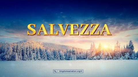 Salvation-PL