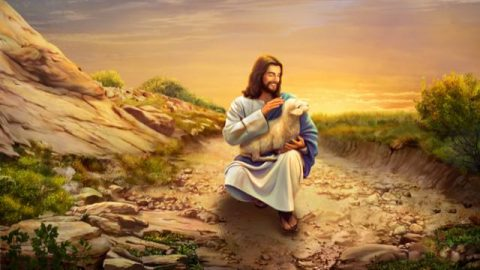 Learn God's Will to Save Man From the Parable of the Lost Sheep
