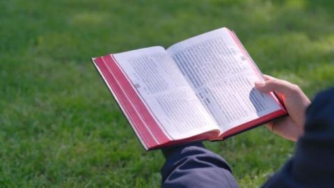 The Lord Jesus' Will Behind Speaking Parables